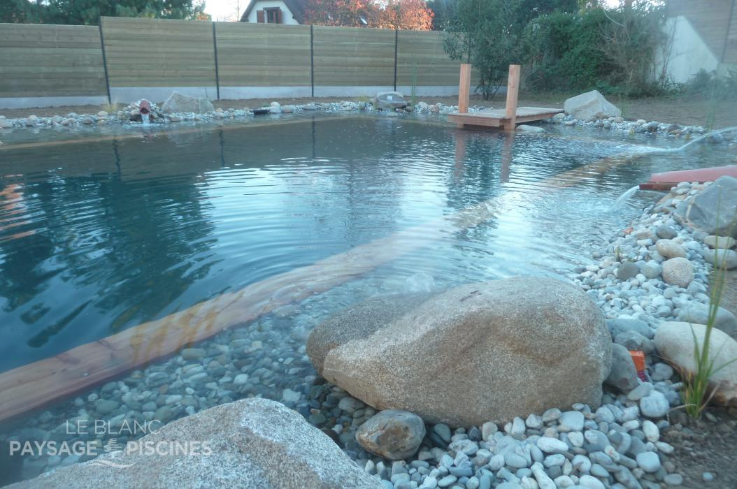 Transformation piscine traditionnelle en bassin baignade for Bassin piscine naturelle