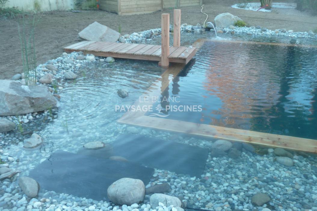 Transformation piscine traditionnelle en bassin baignade for Piscine 64